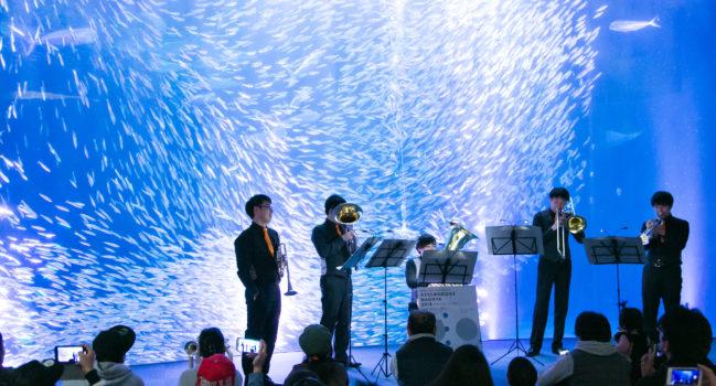 水族館 クラシックコンサート-アッセンブリッジ・ナゴヤ活動報告③-